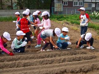 s-2nensei daizunotanemaki №2.jpg