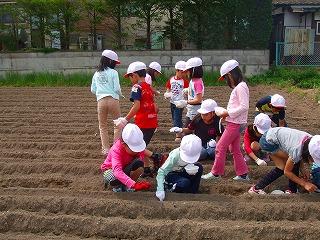 s-2nensei daizunotanemaki №3.jpg