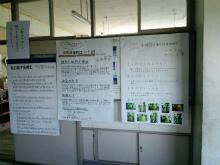 H250826natsu_sakuhin08.jpg