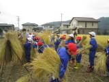 h261107inekari_3.JPG