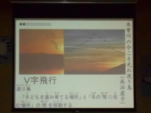 DSCN0307no1.jpg