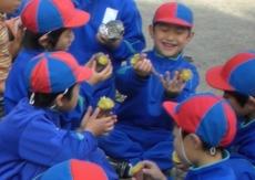 20101116imohori.jpg