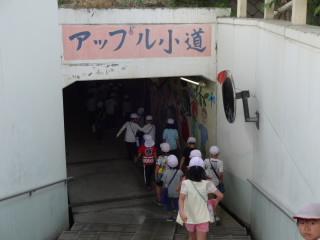 20180517tiikitanken_yamaguti002.JPG