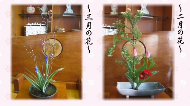 20180308topphoto_hana_s.jpg