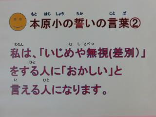 CIMG3351.JPG