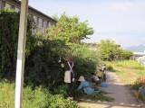 20120909007.jpg