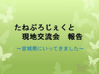 tane_project.jpg