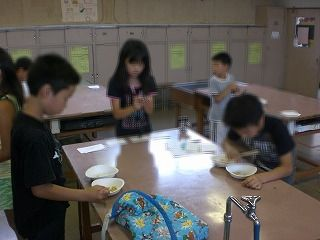 20100723siojirishoufesu02.jpg
