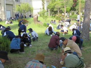 oyakosagyouu003.JPG