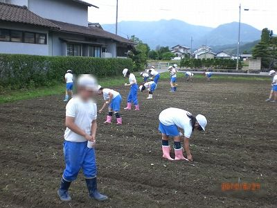 20100621daizu01.jpg